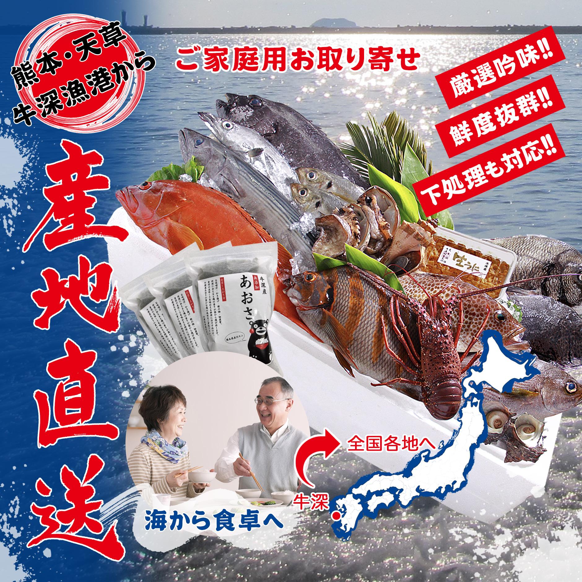 熊本・天草・牛深漁港から産地直送します!ご家庭用お取り寄せ。海から食卓へ