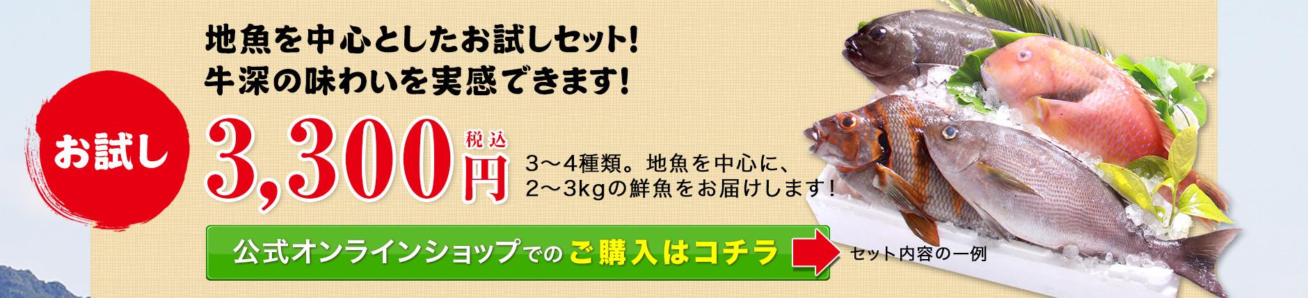 お試し3300円セットのお取り寄せ。地魚を中心としたお試しセット!牛深の味わいを実感できます!