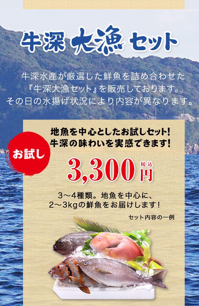『牛深大漁セット』牛深水産が厳選した鮮魚を詰め合わせた『牛深大漁セット』を販売しております。その日の水揚げ状況により内容が異なります。お試し3300円セット。地魚を中心としたお試しセット!牛深の味わいを実感できます!3〜4種類。地魚を中心に、2〜3kgの鮮魚をお届けします!
