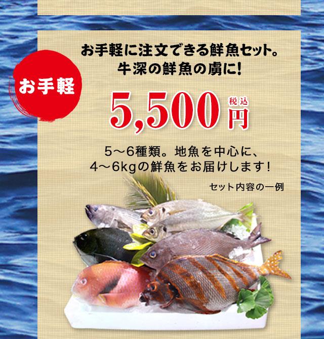 お手軽5500円セットのお取り寄せ。お手軽に注文できる鮮魚セット。牛深の鮮魚の虜に!5〜6種類。地魚を中心に、4〜6kgの鮮魚をお届けします!