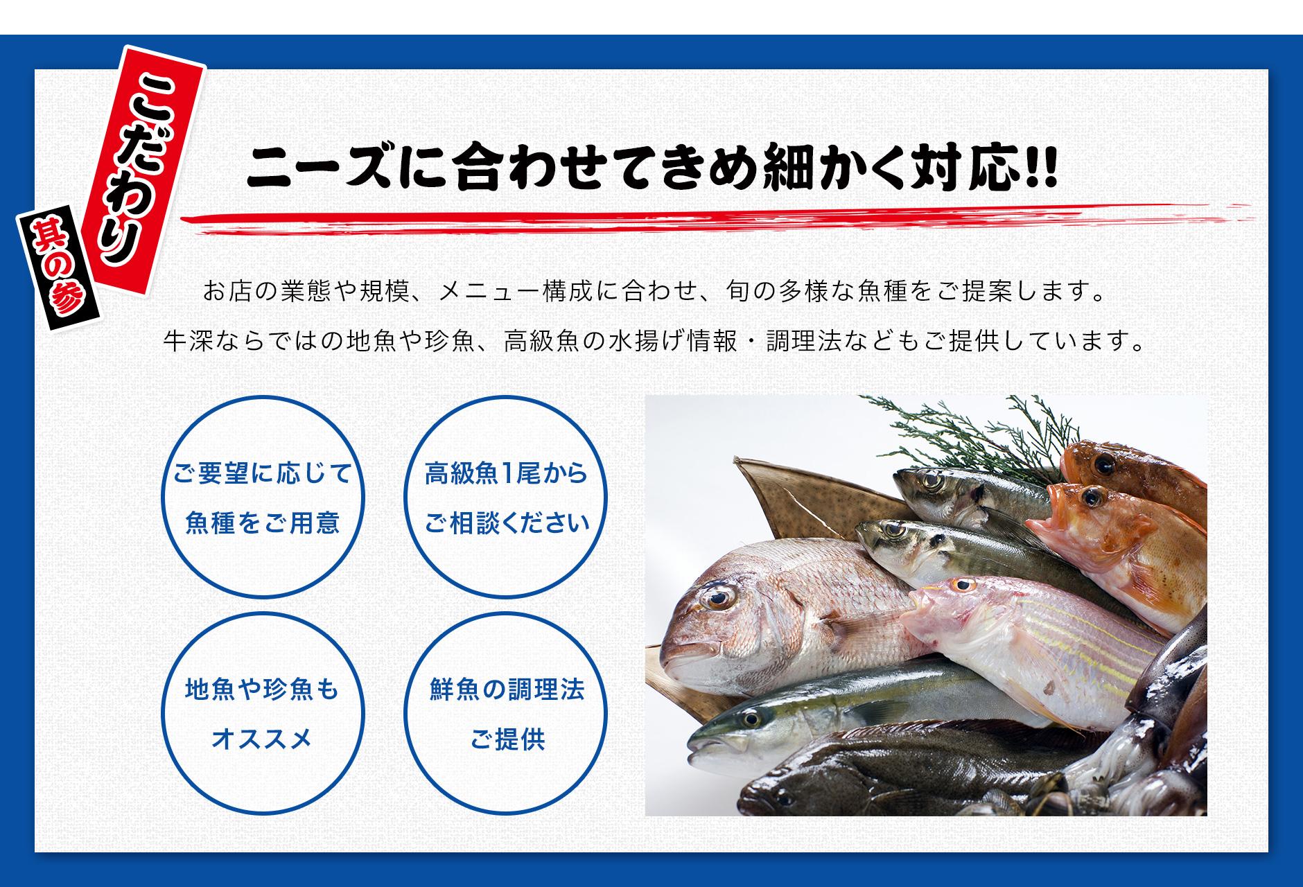 牛深水産のこだわり其の参ニーズに合わせてきめ細かく対応お店の業態や規模、メニュー構成に合わせ、旬の多様な魚種をご提案します。牛深ならではの地魚や珍魚、高級魚の水揚げ情報・調理法などもご提供しています。