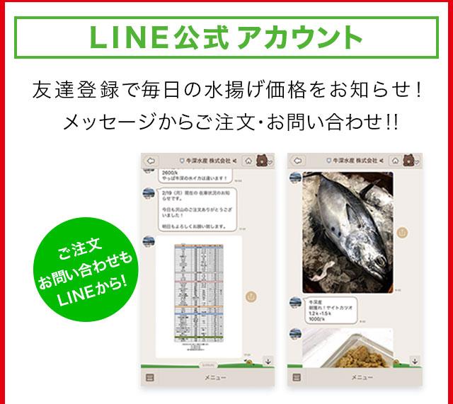 LINE@ご注文お問い合わせもLINEから!友達登録で毎日の水揚げ価格をお知らせ!