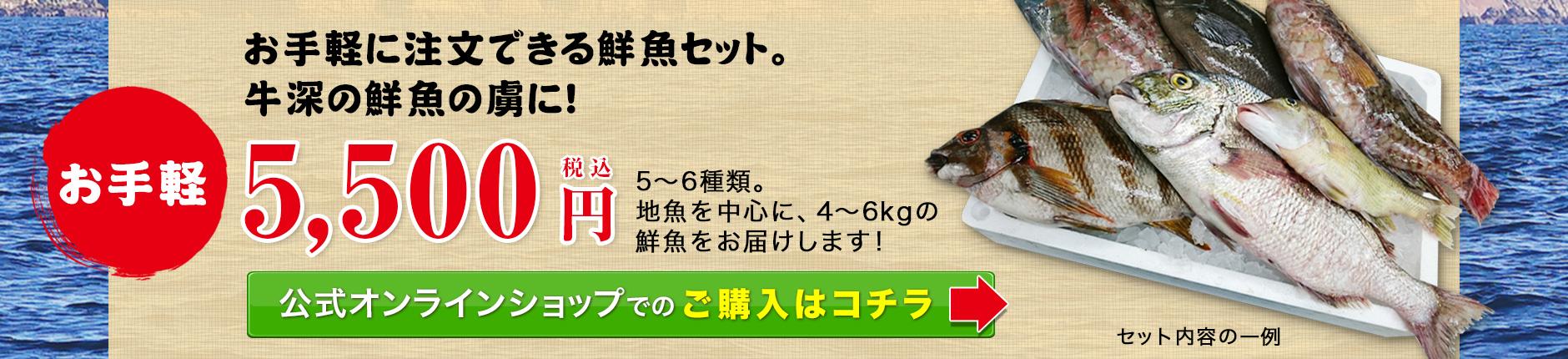 お手軽5500円。充実した鮮魚セット!新鮮なお魚を自慢の目利きでチョイスします!