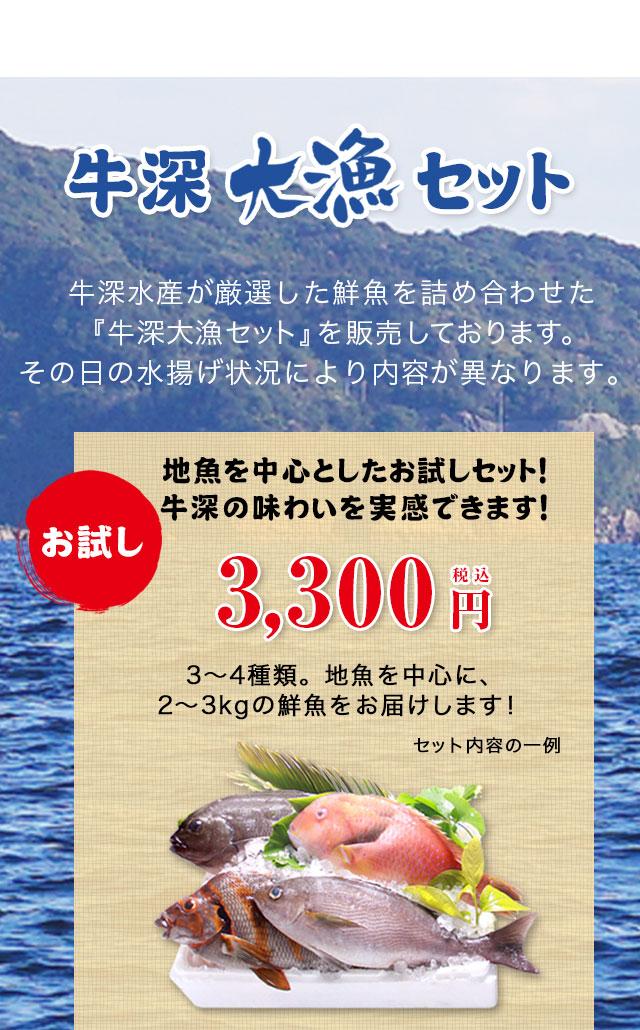牛深大漁セット牛深水産が厳選した鮮魚を詰め合わせた『牛深大漁セット』を販売しております。その日の水揚げ状況により内容が異なります。地魚を中心としたお試しセット!牛深の味わいを実感できます!